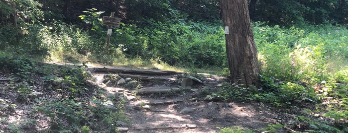 Spring Farm Trail Head is one of Hudson.
