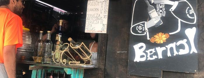 La Pata del Perro - Pulque, cerveza Y Mezcal is one of Qro Jiffy Roadtrip.