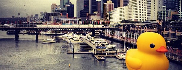 Darling Harbour is one of Sydney.