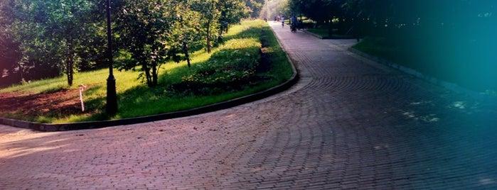 Парк 60-летия Октября is one of Tempat yang Disukai Andrey.