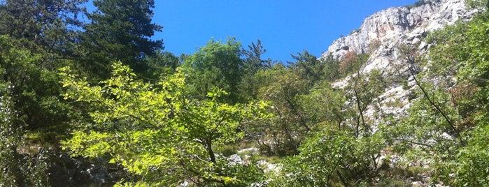 Carso Triestino is one of Top Locations rund um Triest (ca. 50 km) SLO, ITA.