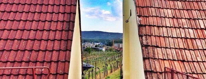 Heuriger Weinbau Stoiber is one of Top Weinlokations Österreich.