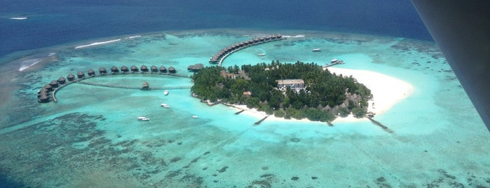 Paradise Island Resort is one of Upscale outdoor locations.