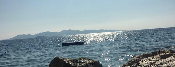 Seyrekcakil Plaji is one of Armagan : понравившиеся места.