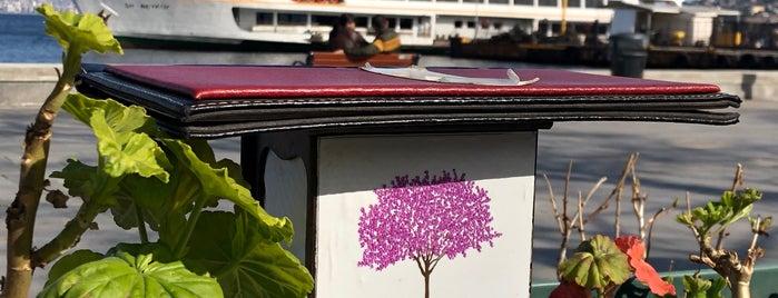 Erguvan Restaurant is one of Tempat yang Disimpan Irem.