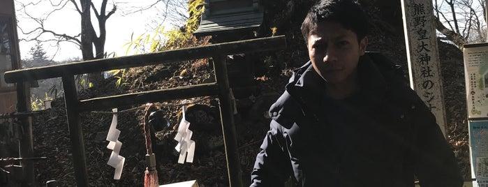 熊野皇大神社のシナノキ is one of สถานที่ที่ T ถูกใจ.