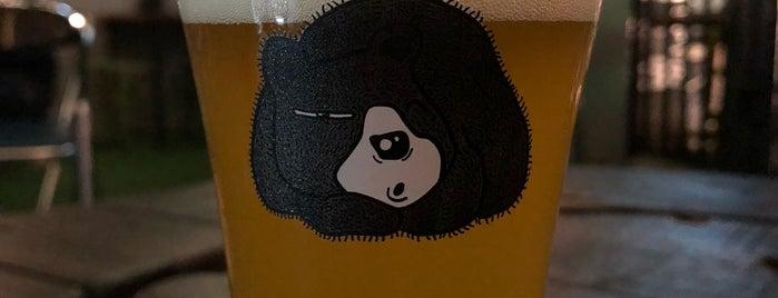 Yod Bar รังหมี is one of Miniさんのお気に入りスポット.