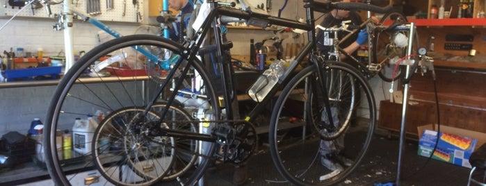 Bucephalus Bikes is one of Tempat yang Disukai Bill.
