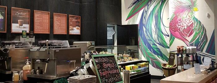 Starbucks is one of Tempat yang Disukai Stephania.