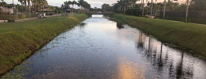 Boca Raton, FL is one of Wayne'nin Beğendiği Mekanlar.