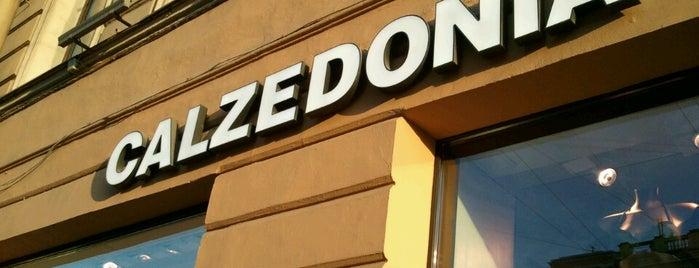 Calzedonia is one of Tempat yang Disukai Дарина.