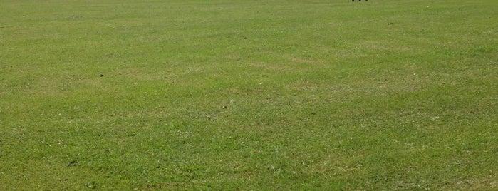 Becket's Park is one of Orte, die Celal gefallen.