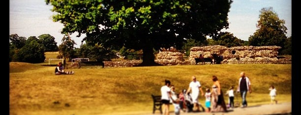 Verulamium Park is one of Posti che sono piaciuti a Kenneth.