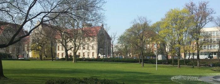 Park Henryka Wieniawskiego is one of Poznan!.