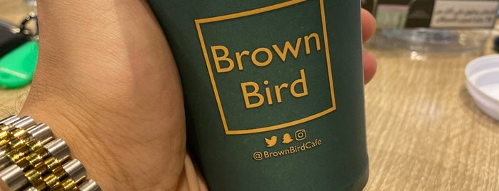 Brown Bird is one of Northern Borders.
