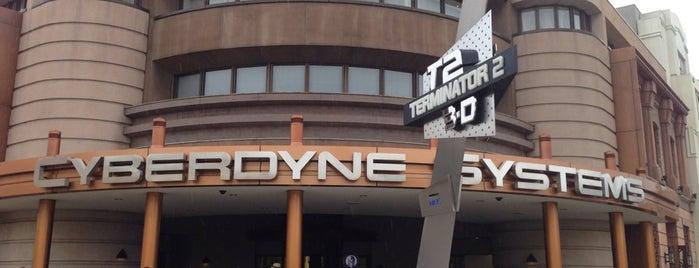 Terminator 2:3-D is one of Universal Studios Japan.