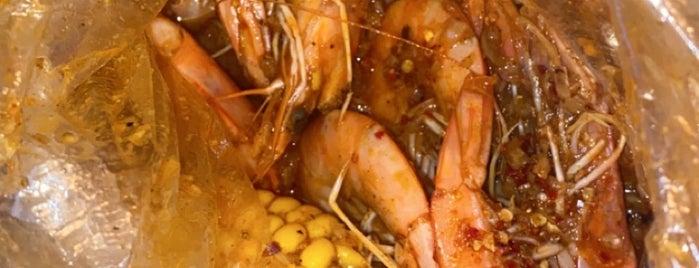 Shrimp Anatomy is one of สถานที่ที่บันทึกไว้ของ Queen.