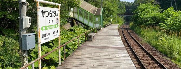 Katsuradai Station is one of JR 홋카이도역 (JR 北海道地方の駅).