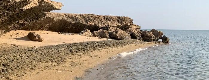 بحر أملج | الدقم is one of Queen: сохраненные места.