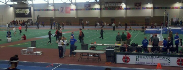Reggie Lewis Track & Athletic Center is one of Recreation.