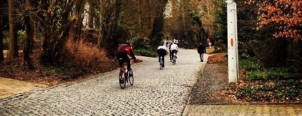 Kruisberg is one of Ronde Van Vlaanderen.