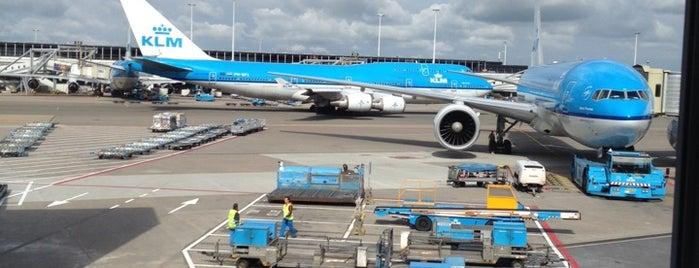 Flughafen Amsterdam Schiphol (AMS) is one of สนามบินนานาชาติ (1).