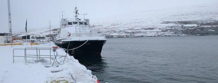 Ambassador Akureyri Whale Watching is one of Daníel Sigurður 님이 좋아한 장소.