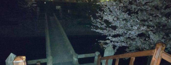 夙川にかかる橋