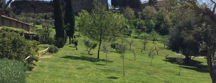 Borgo di Tragliata Hotel is one of Posti che sono piaciuti a Patrizio.