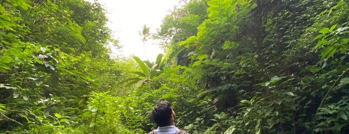 Tukad Cepung Waterfall is one of Bahar'ın Bali'si.