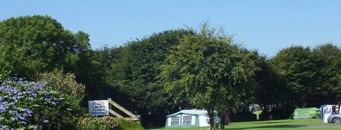 Stowford Farm Meadows is one of สถานที่ที่ Martin ถูกใจ.