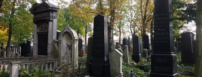 Nový židovský hřbitov | New Jewish Cemetery is one of Prag.