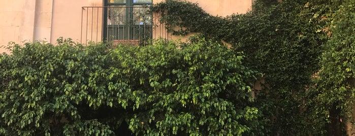 Seven Rooms Villadorata is one of Hotels.