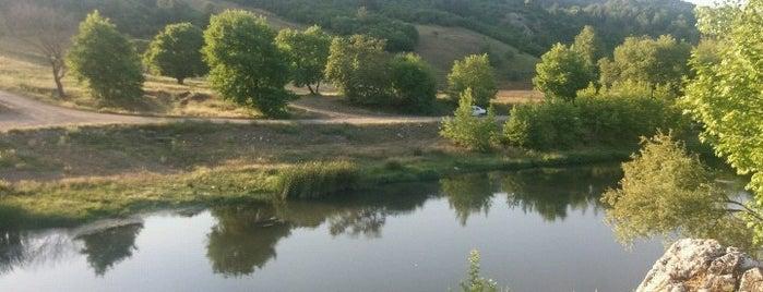 Kocaavşar Mesire Alanı is one of สถานที่ที่บันทึกไว้ของ Emre.