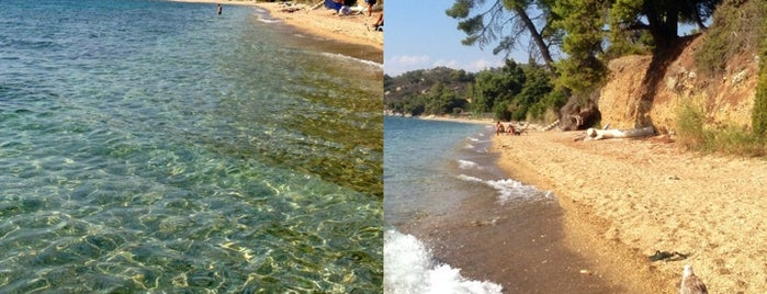 Elea Beach is one of Chalkidiki.