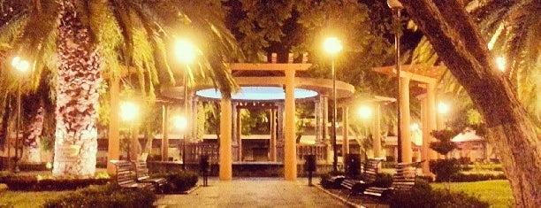 Jardín Municipal is one of Tempat yang Disukai @lagartijilla83.
