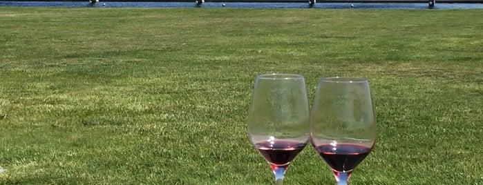 Artesa Vineyards & Winery is one of Lugares favoritos de Erika.