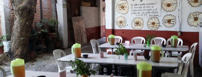 Comedor Comunitario Xoco is one of 24 horas de comida en CDMX.