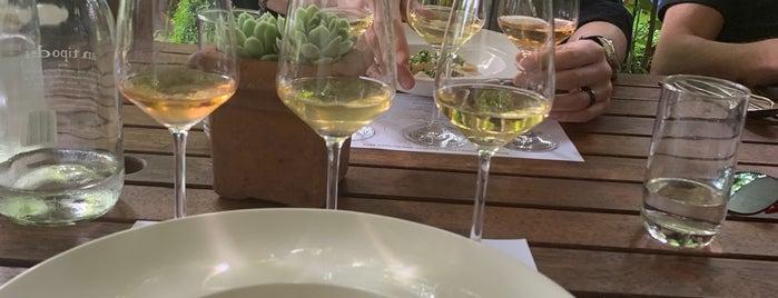 Herzog Winery & Restaurant is one of Lugares favoritos de Tyler.