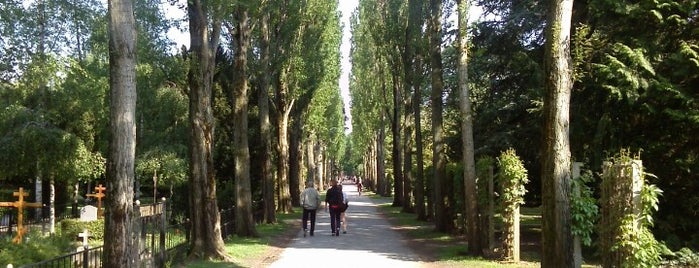 Assistens Kirkegård is one of Dat: сохраненные места.
