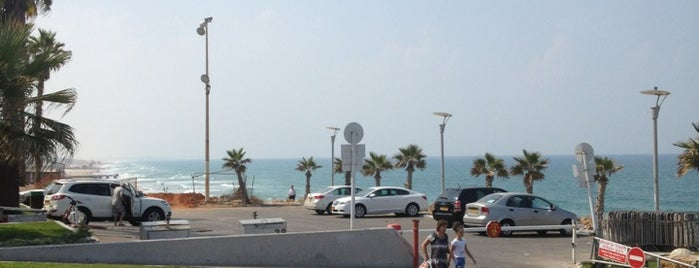 Bat Yam Promenade (Tayelet Bat Yam) is one of Orte, die Xenia gefallen.