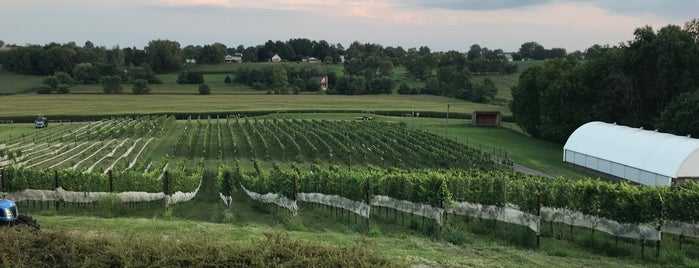 The Vineyard at Grandview is one of Wineries Visited.