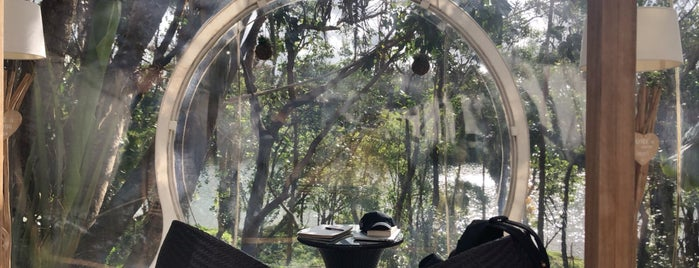 The Bubble Lodge is one of Bucket list.