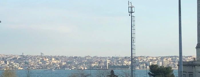 Beşiktaş Şehitler Tepesi is one of hndn_k : понравившиеся места.