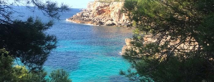 Cala s'Almunia is one of Vamos Mallorca.