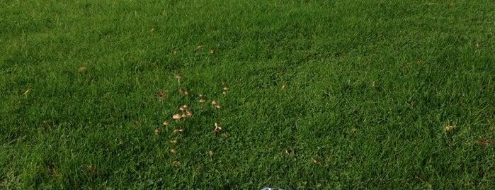 Crondon Park Golf & Country Club is one of Lef 님이 좋아한 장소.