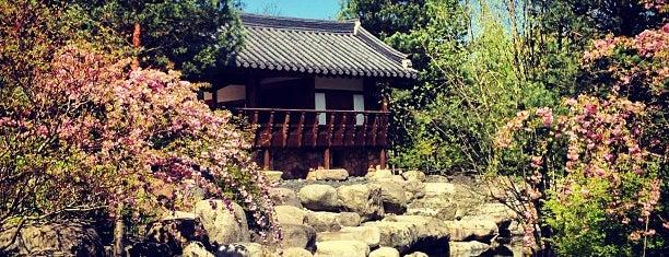Koreanischer Seouler Garten is one of Posti salvati di JayJay Jojo Joachim.