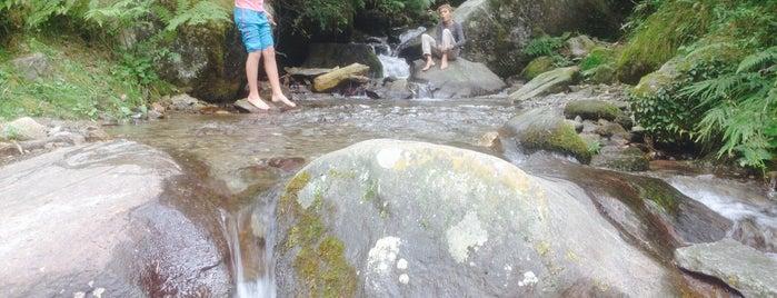 Vashisht Waterfall is one of India North.