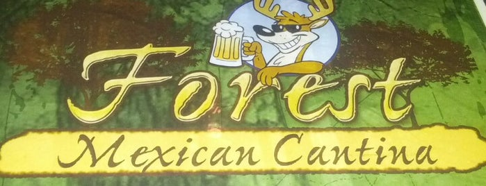 Forest Mexican Cantina is one of Darrick 님이 저장한 장소.