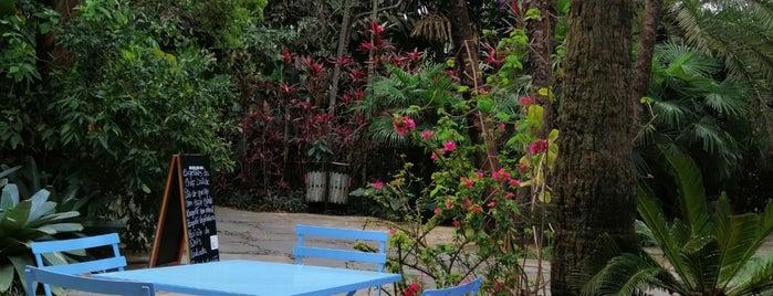Café das Flores is one of Inhotim.